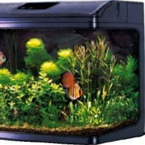 продам аквариум JEBO R 352