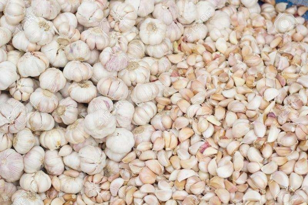 Продается чеснок для весенней и осенней посадки,  лучшие сорта 3